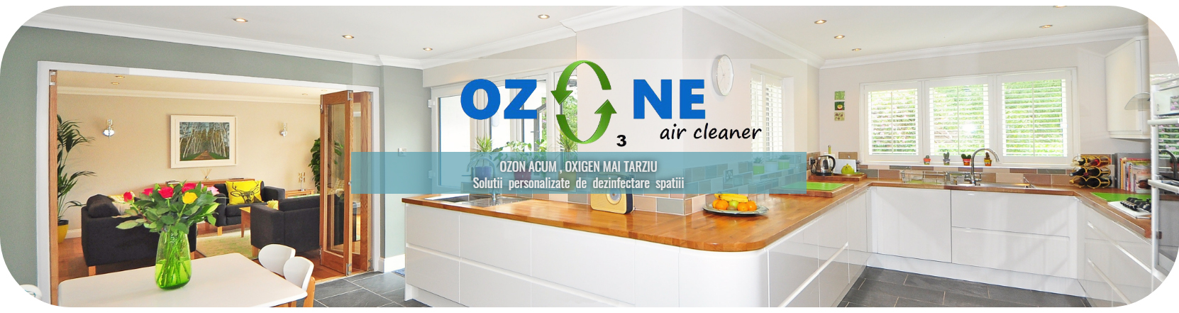 Ozone air cleaner 3